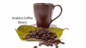 Arabica Coffee Coffee Beans